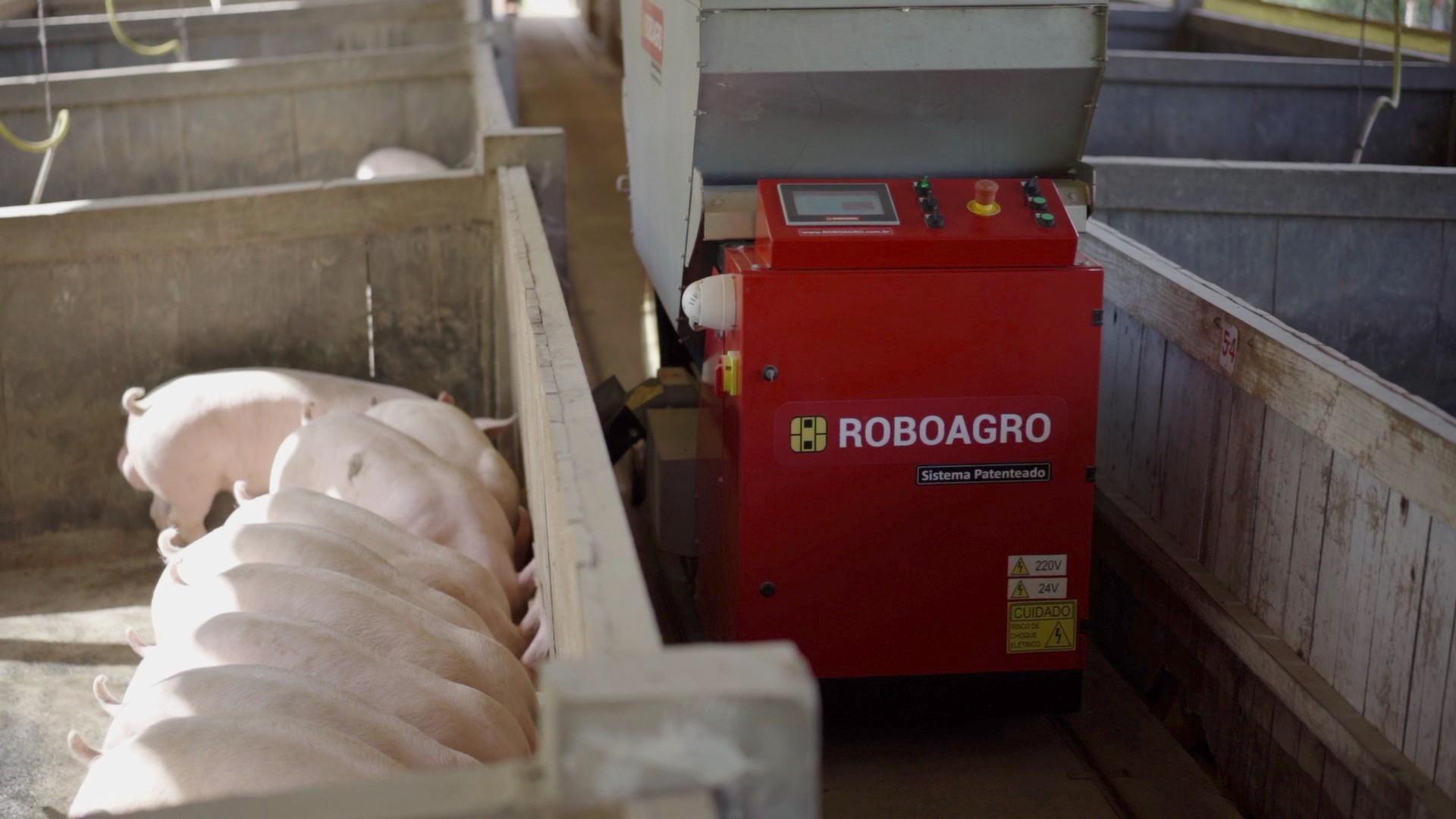 Robô da Roboagro alimenta porcos enquanto toca música clássica (Foto: Roboagro/Divulgação)