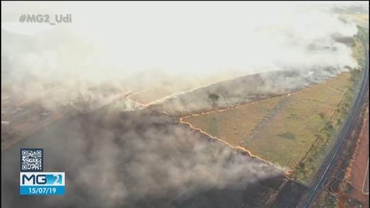 Bombeiros combatem dois incêndios em Uberlândia; um deles atinge área de preservação