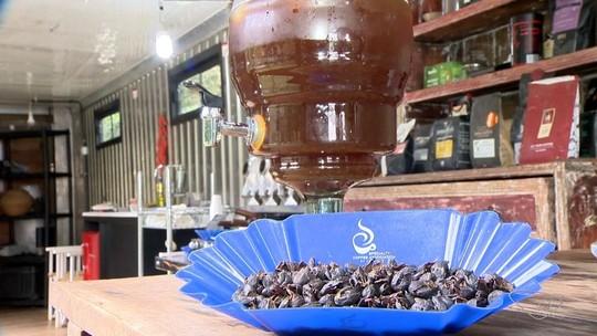 Café de Pedra Azul, ES, com saca vendida a R$ 39 mil vence concurso nacional de café especiais