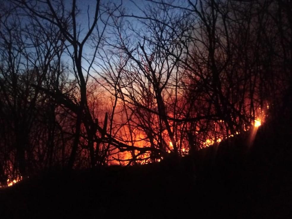 Incêndio atinge mata no município de Francisco Dantas, na região Oeste potiguar — Foto: Corpo de Bombeiros/Divulgação