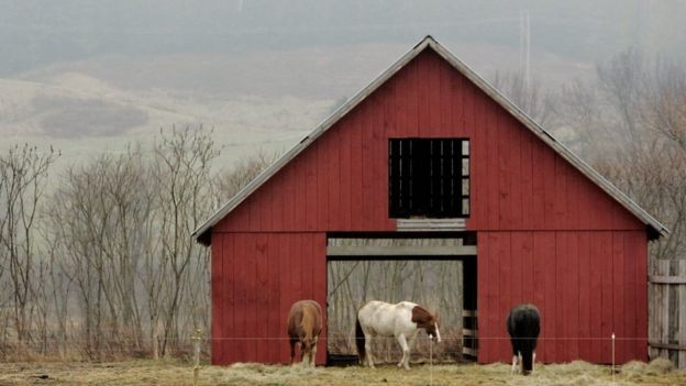 O setor de laticínios em Vermont está tentando atrair uma força de trabalho mais diversificada (Foto: Reuters, via BBC)