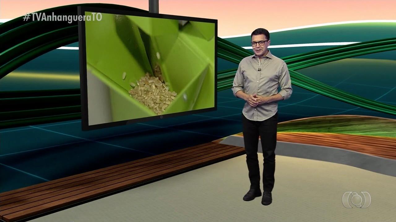 VÍDEOS: Jornal do Campo - TO de domingo, 31 de maio