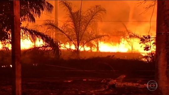Maior poluidor do Brasil está longe das cidades: é o desmatamento