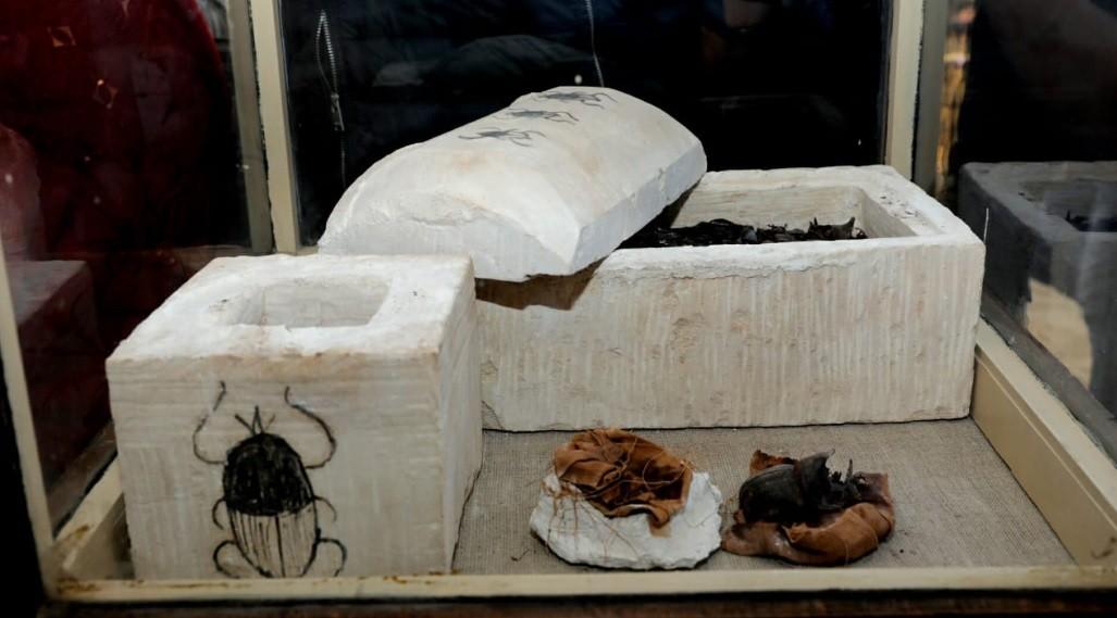 Urna com escaravelhos (Foto: Divulgação/ Ministério das Antiguidades)