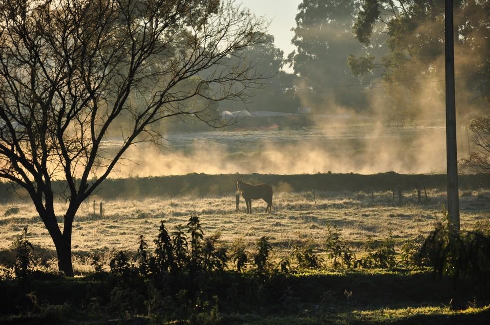 Frio em Santo Ângelo nesta quinta-feira (4) — Foto: Ebersom Vargas/Arquivo Pessoal
