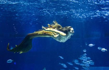 No sábado (26), Zeca vai descobre que Ritinha está trabalhando como sereia em um aquário em Belém TV Globo