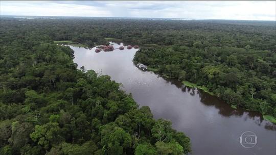WWF Brasil mostra como governos vêm ameaçando unidades de conservação da Amazônia