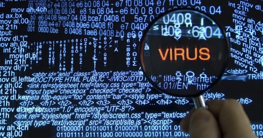 Saiba como identificar sites que podem conter vírus e malware