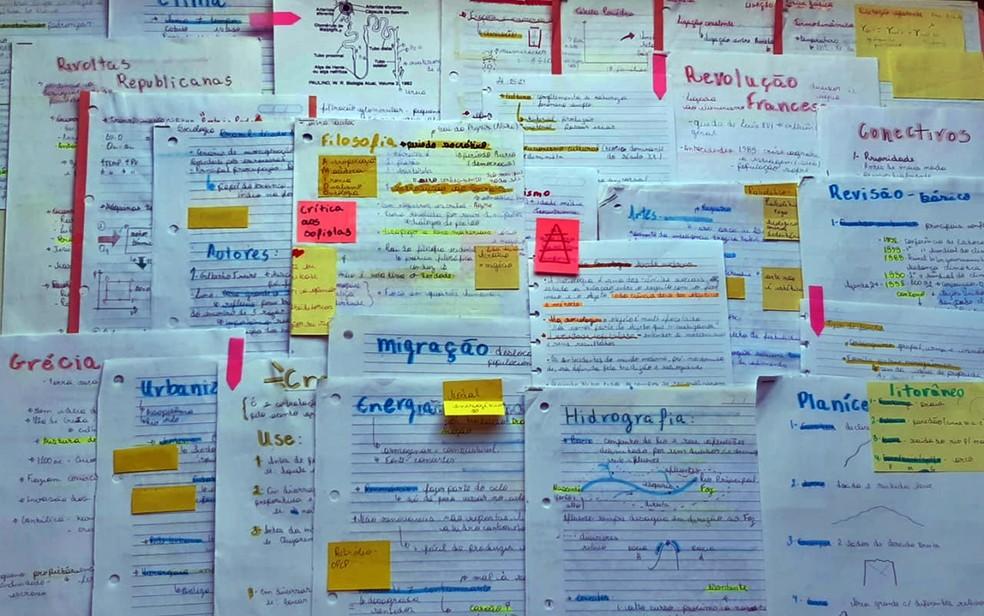 Resumos de estudo produzidos pela estudante de Varginha, MG — Foto: Lívia Assis Aparecida