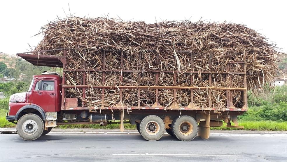Caminhões que transportam cana-de-açúcar foram autuados em Ribeirão, na Zona da Mata de Pernambuco — Foto: Polícia Rodoviária Federal/Divulgação