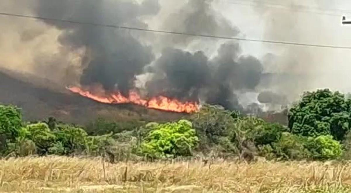 Bombeiros tentam controlar incêndio que já dura 8 dias em Tarrafas, no Ceará