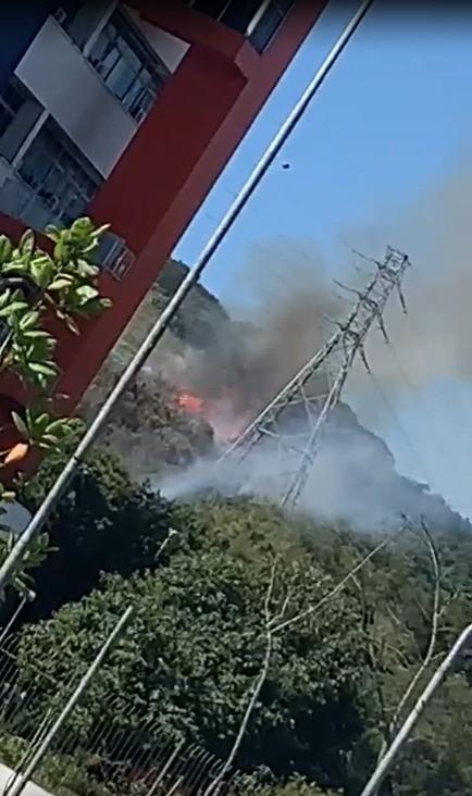 Queima de fiação provoca principio de incêndio em mata em Guarujá, SP