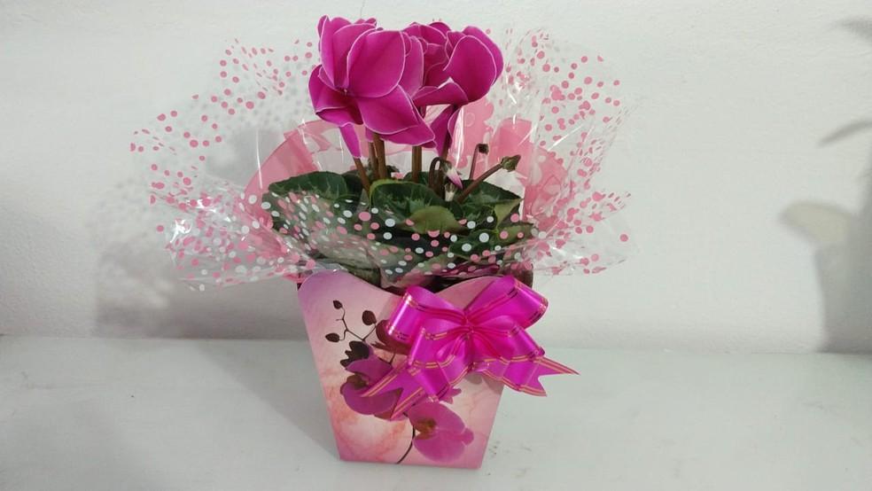 Vasos já podem ser encomendados na Floricultura em Divinópolis— Foto: Floricultura Serikwa/Divulgação
