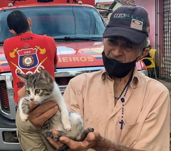 Bombeiros quebram calçada para resgatar gato em Paulista