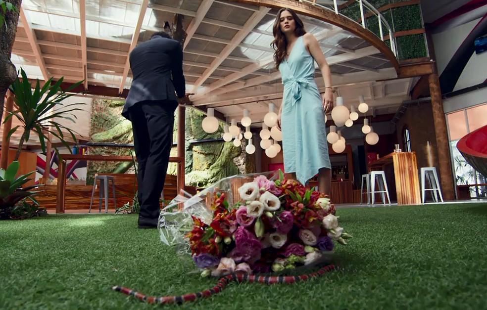 Emílio é picado por cobra que estava escondida nas flores que ele daria para Marocas — Foto: TV Globo
