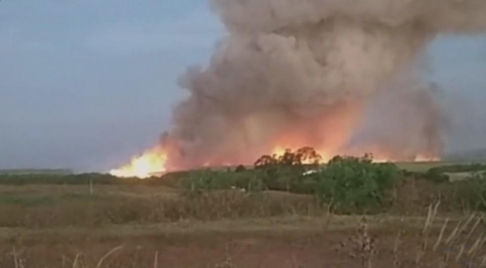 Incêndio em área de canavial em Catanduva — Foto: Reprodução/TV TEM
