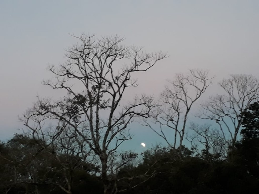 Eclipse parcial da Lua visto de Itaiópolis, SC. — Foto: Paulo Marcelo Adamek