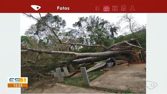 Vendaval deixa moradores sem energia em Vargem Alta e Cachoeiro, no Sul do ES