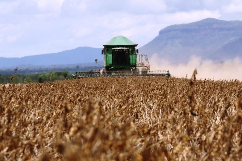 Agronegócio é a principal atividade da economia do Tocantins (Foto: Seagro/Divulgação)