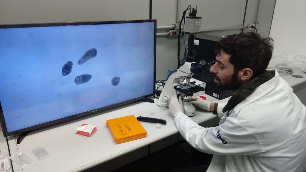 No futuro, o Postan pode ajudar no tratamento de esquistossomose (Foto: Arquivo Pessoal)