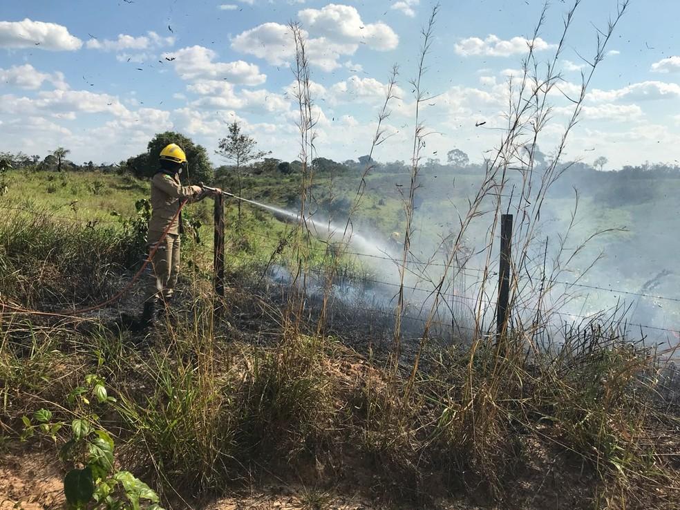 Corpo de bombeiros atendeu mais de 2 mil ocorrência de incêndios ambientais entre junho e julho  (Foto: Divulgação/Corpo de Bombeiros do Acre)