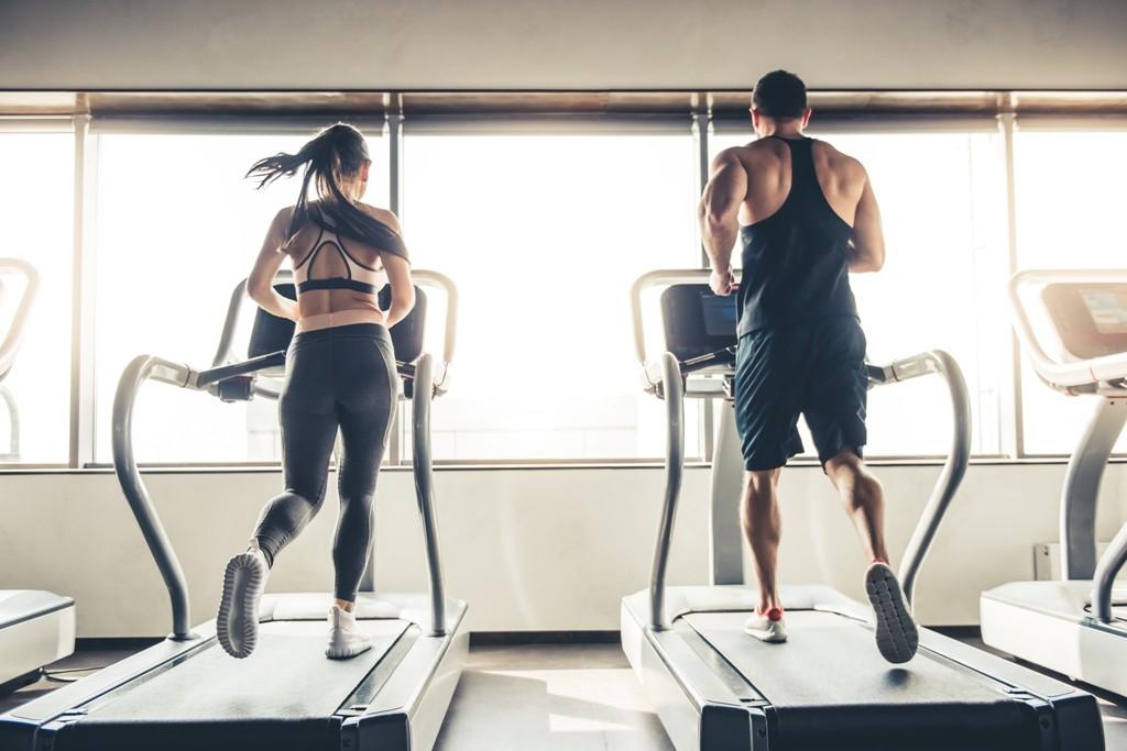 Como funciona nosso metabolismo e por que ele varia tanto de pessoa para pessoa?