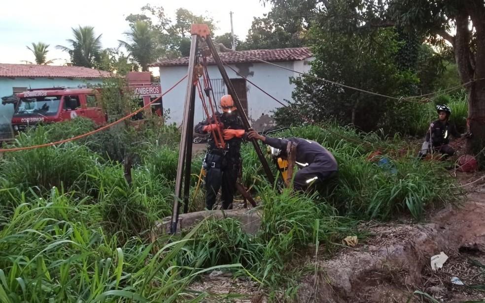 Bode cai em cisterna e é resgatado com vida pelos bombeiros na Bahia — Foto: Divulgação/Corpo de Bombeiros
