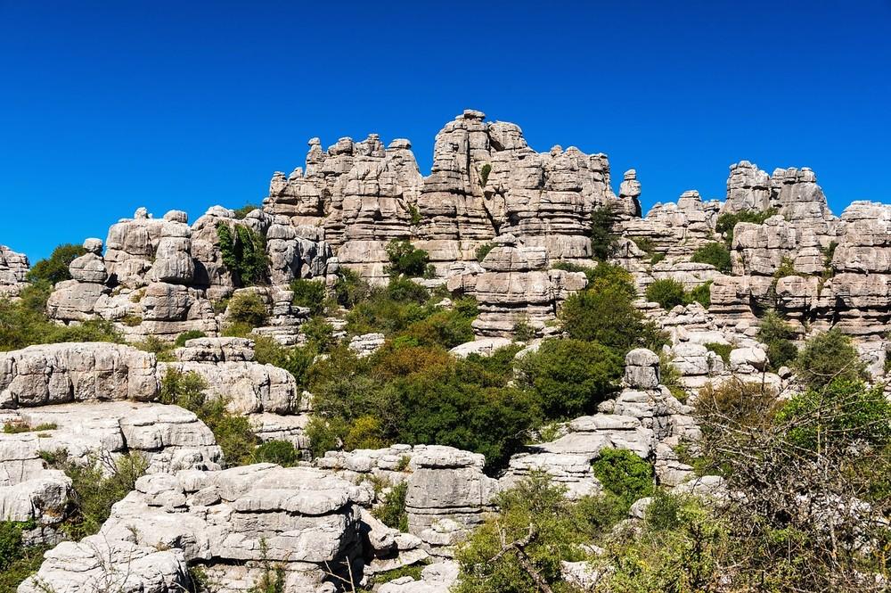 Há esforços para reflorestar a vegetação mesmo em áreas secas como o interior da Espanha — Foto: Pixabay