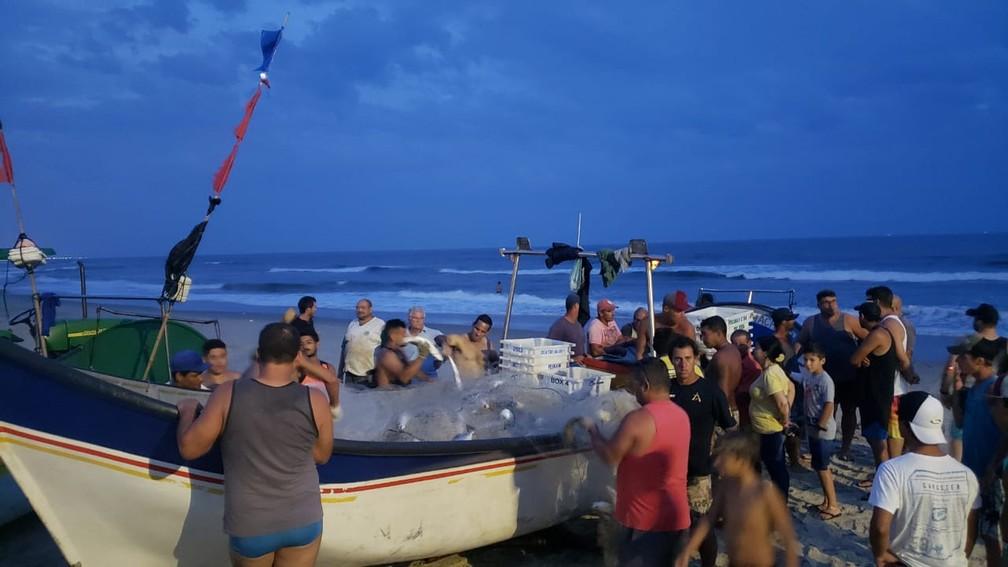 Cerca de 300 quilos de pescada-branca foram distribuídos entre as pessoas que ajudar a tirar os peixes da rede — Foto: Almir Alves/Arquivo pessoal