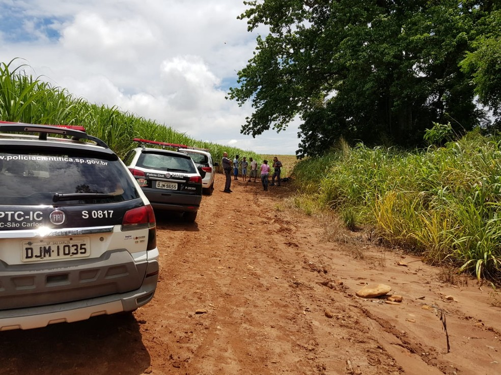 Corpo de jovem foi encontrado em canavial em Dourado — Foto: Blog do Ronco