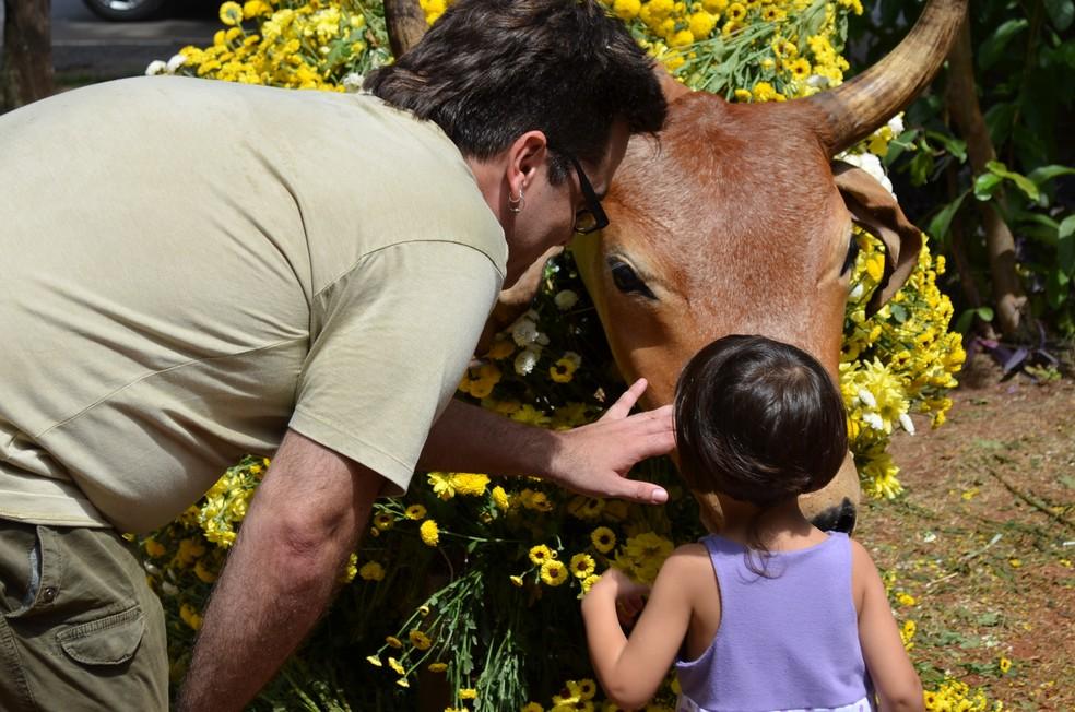 Edição de 2018 da Festa do Boi deve receber 330 mil visitantes — Foto: Tiago Gonçalves/G1
