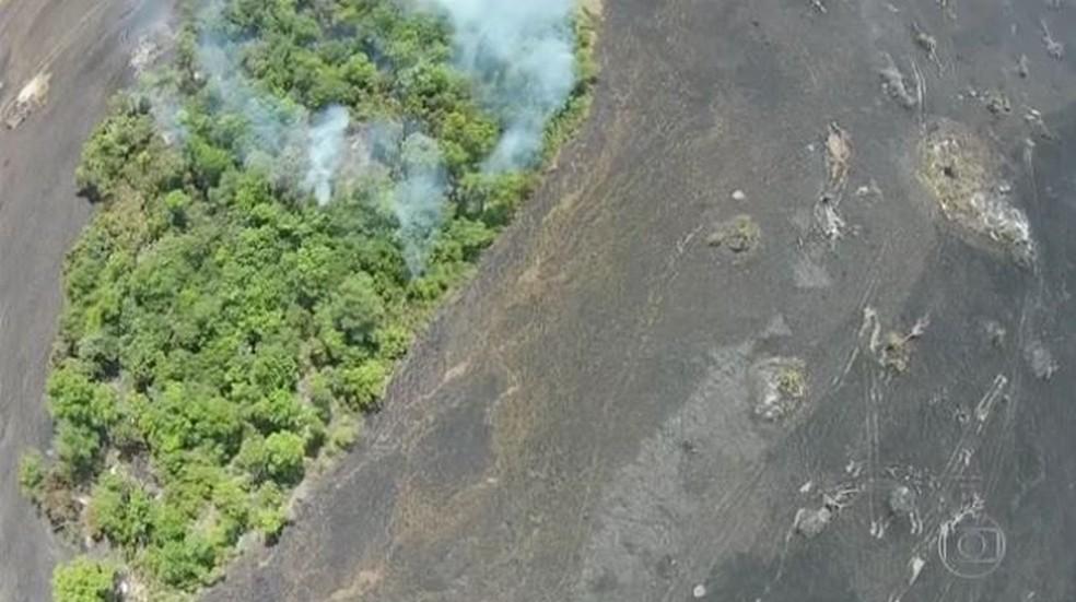 Vista de área atingida por queimada no Parque Nacional do Araguaia (Foto: Reprodução/TV Anhanguera)