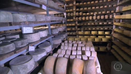 Produtora cria 'spa' subterrâneo onde queijos ganham sabor e qualidade