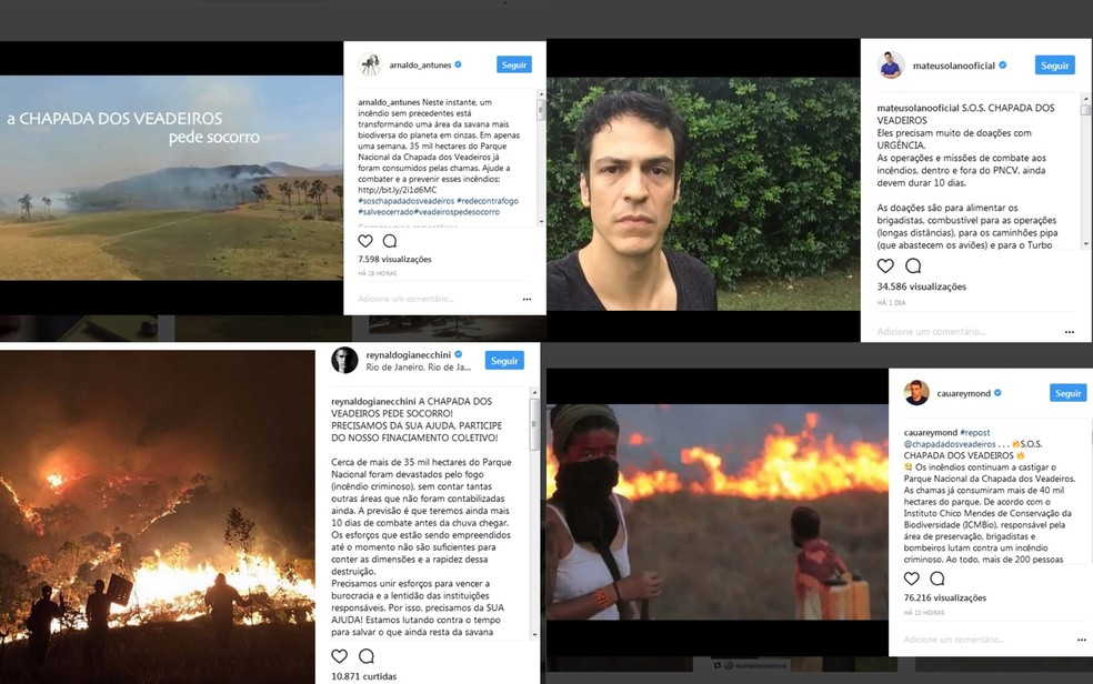 Artistas fazem campanha pedindo doações para brigadistas que combatem incêndio na Chapada dos Veadeiros, em Goiás (Foto: Reprodução/Instagram)
