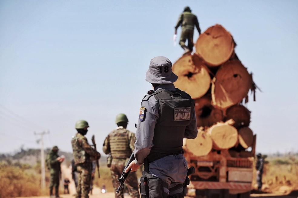 Operação combate o desmatamento na Amazônia — Foto: Christiano Antonucci/Secom-MT