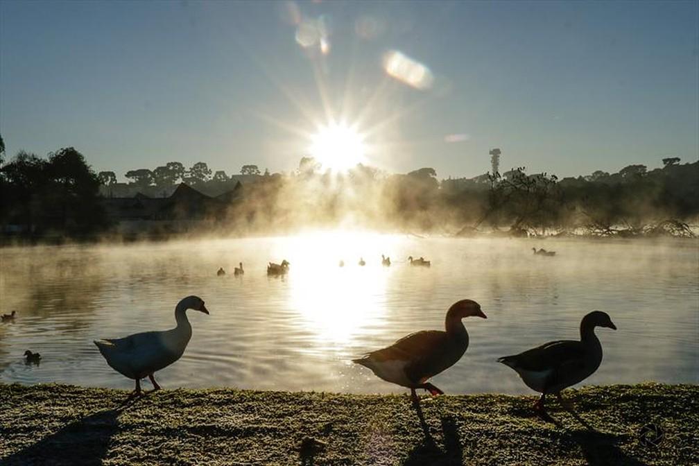 Nascer do sol é registrado em manhã com geada no Parque Barigui — Foto: Ricardo Marajó/FAS