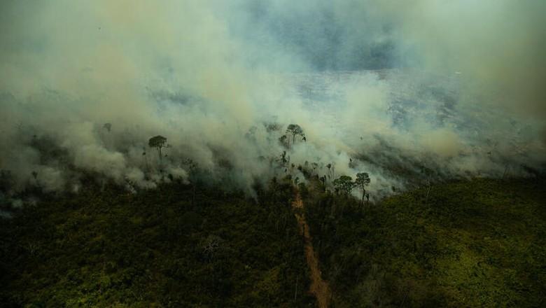 Monitoramento de queimadas na Amazônia feito pelo Greenpeace em julho de 2021 (Foto: Christian Braga / Greenpeace)