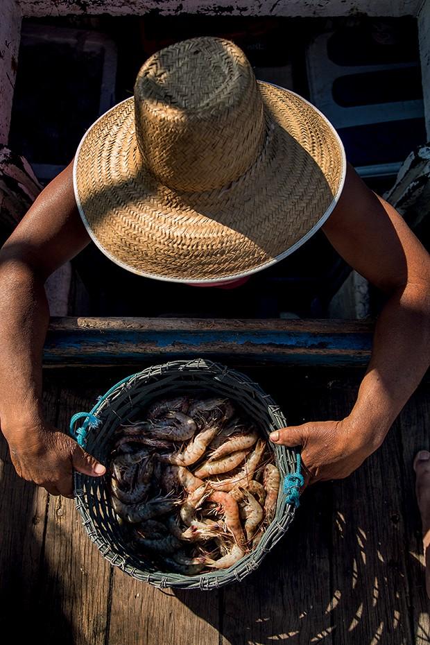 Lifestyle Paraty - O barco do Careca, fornecedor de camarão (Foto: Rogério Voltan)