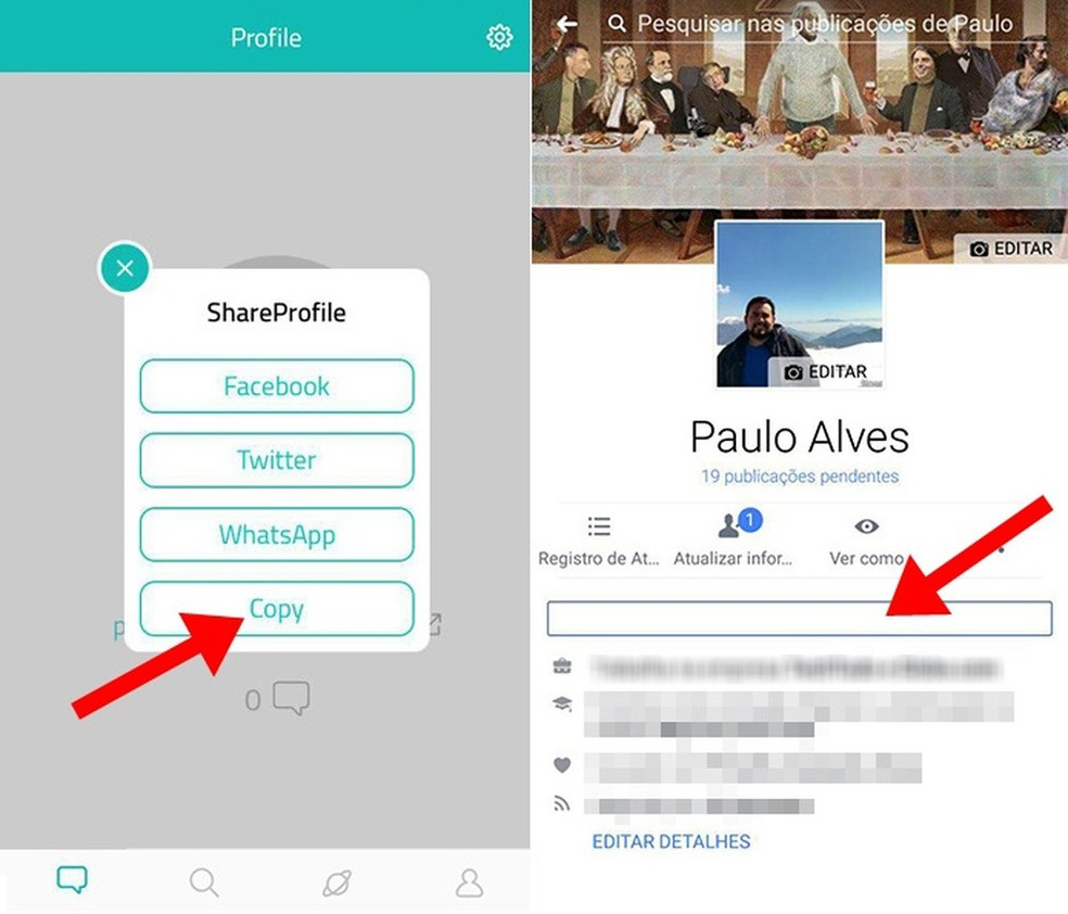 Copie o link do perfil para divulgar na sua página (Foto: Reprodução/Paulo Alves)