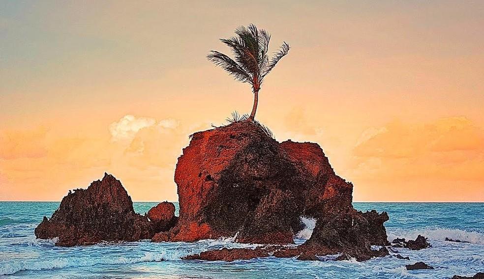 Praia de Tambaba é considerada uma das praias mais belas da Paraíba — Foto: Eduardo Fechine
