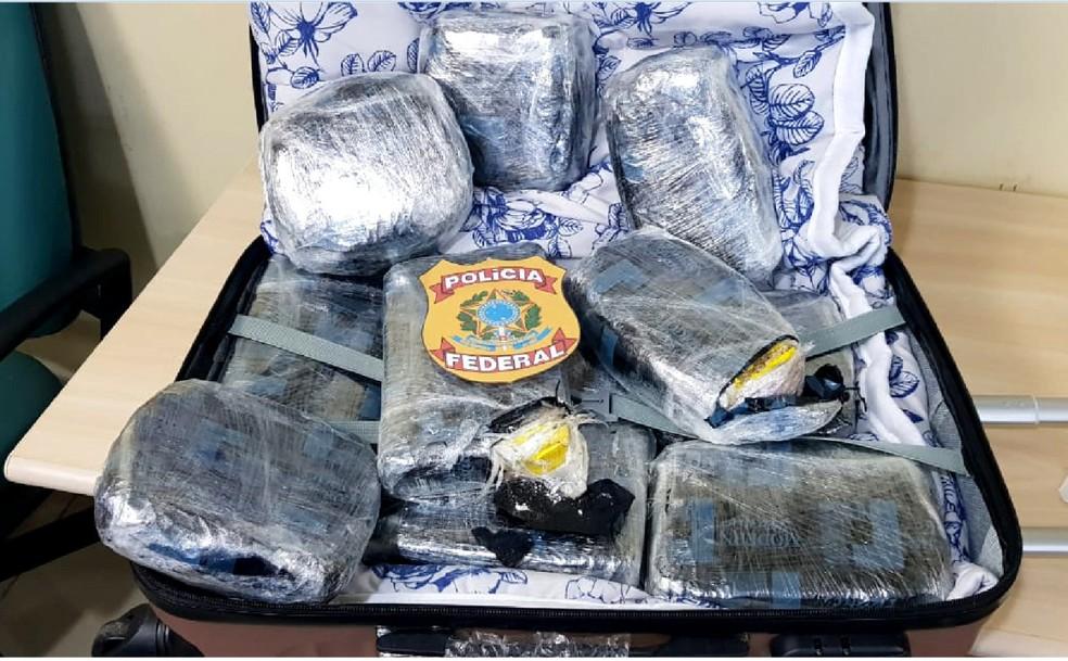 Droga foi localizada em bagagem de passageira que embarcou em voo de Rio Branco para o Recife — Foto: Polícia Federal/Divulgação