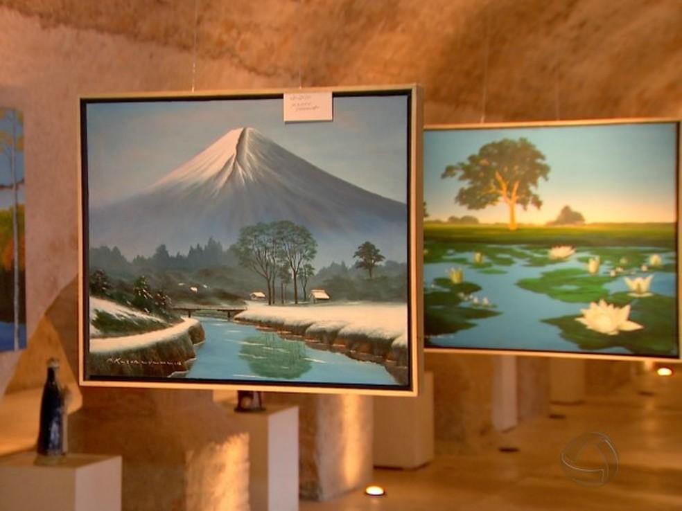 Paisagens de Mato Grosso e Japão (Foto: Reprodução/TVCA)