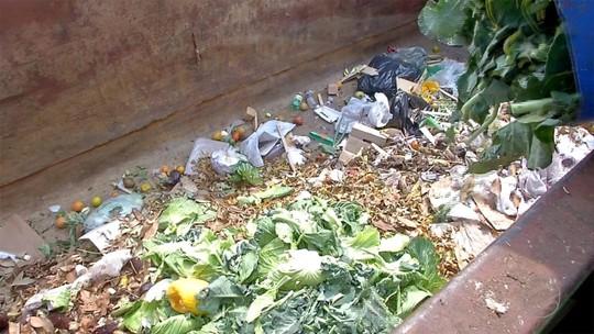 Ceasa inaugura processo de reciclagem de resíduos em Campo Grande