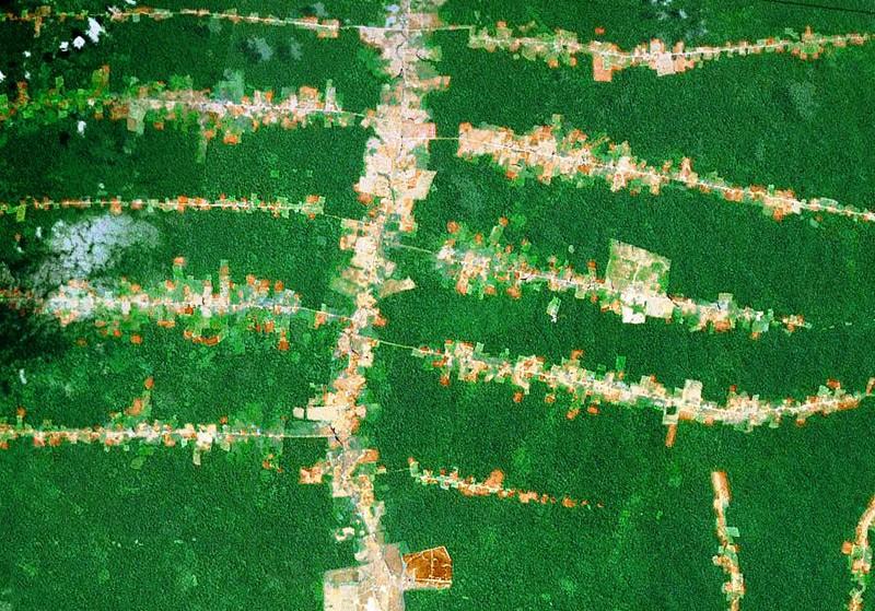 Desmatamento acompanha o curso das estradas na Amazônia. (Foto: NASA)