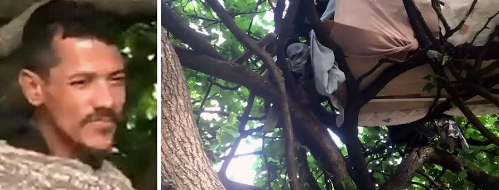 Homem que dormia em casa na árvore foi retirado — Foto: Reprodução/TV Globo