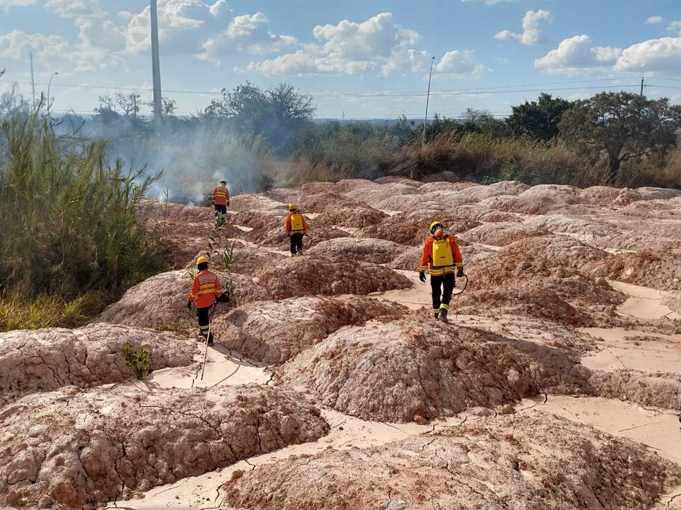 Bombeiros trabalham em área entre a via L4 e o CCBB, em Brasília, atingida por incêndio — Foto: Corpo de Bombeiros DF/Divulgação