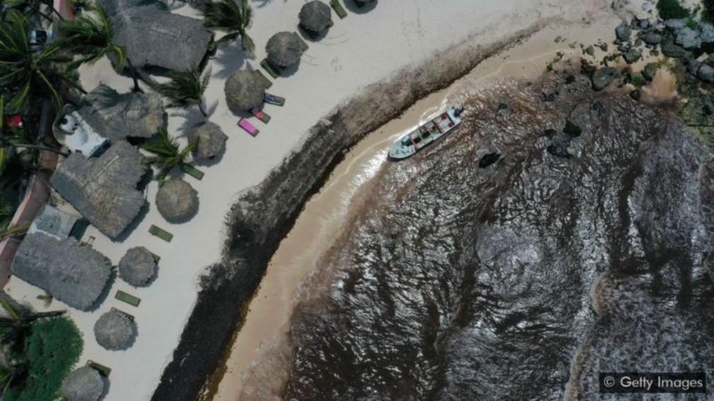 A costa de um resort no México escureceu com a acumulação das algas — Foto: Getty Images