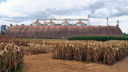 Apoio de cooperativas tem sido fundamental a vários produtores rurais