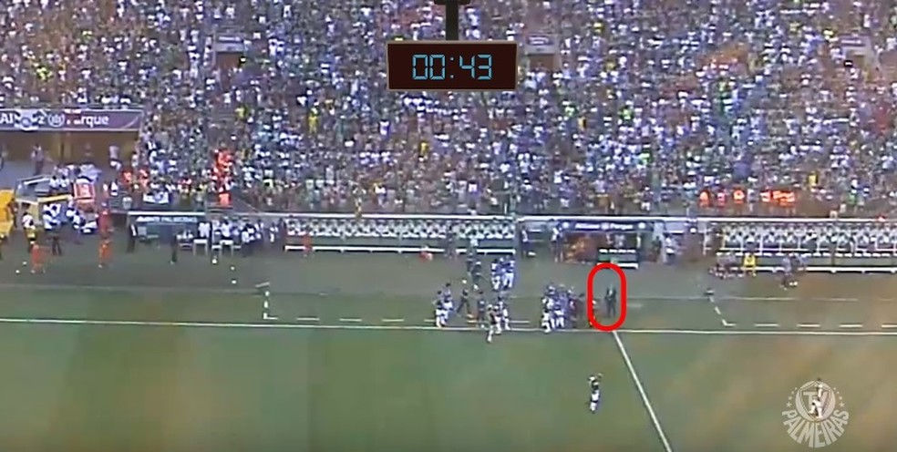 Trecho do vídeo divulgado pelo Palmeiras mostra confusão após pênalti (Foto: Reprodução)