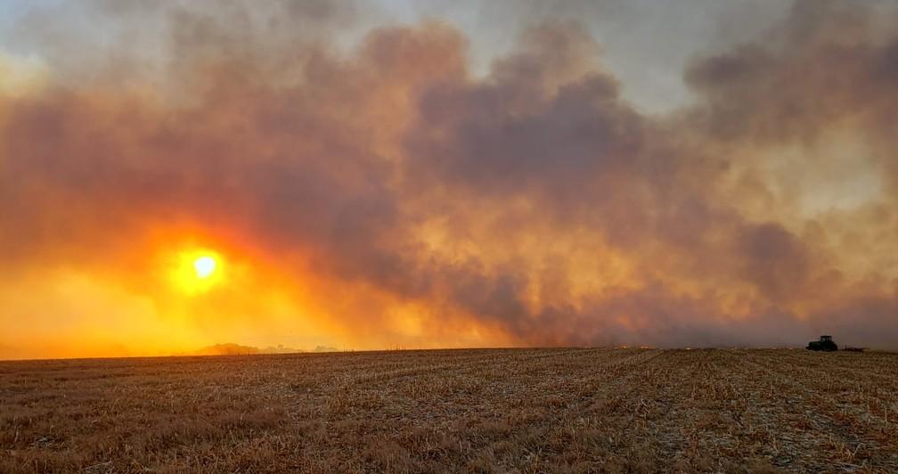 Incêndio em Paranatinga (MT) foi de grande proporção, segundo os bombeiros — Foto: Corpo de Bombeiros